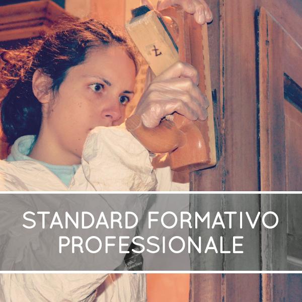 Standard formativo professionale